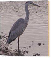 Heron And Grey Water Wood Print