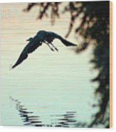 Heron At Dusk Wood Print