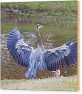 Heron Bank Landing Wood Print