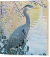 Heron - Beacon Hill Park Wood Print