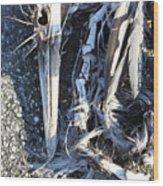 Heron Bones Wood Print