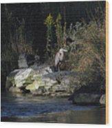 Heron By A Stream Wood Print