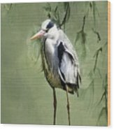 Heron Egret Bird Wood Print