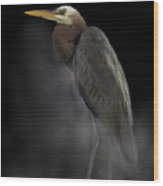 Heron On A Foggy Morning Wood Print