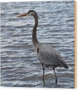 Heron On  Lake Guntersville Wood Print