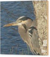 Heron On My Doorstep Wood Print