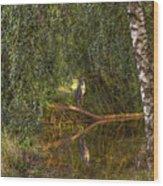 Heron On Path #g7 Wood Print