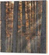 Heron Pond Morning Mist Wood Print