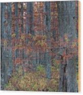 Heron Pond Twilight Wood Print