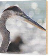 Heron Searching Wood Print