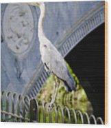 Heron Show Off Wood Print