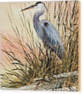 Heron Sunset Wood Print by James Williamson