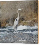 Heron The Rock Wood Print