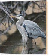 Heron Wading Wood Print