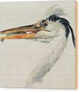 Heron With A Fish Wood Print