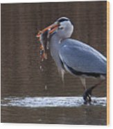 Heron With Perch Wood Print