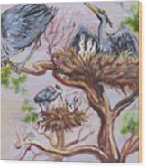 Herons At Nests Wood Print