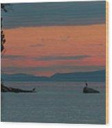 Herons In The Distant At Semiahmoo Bay At Dusk Wood Print