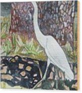 Herron Wood Print