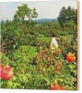Hershey Garden Wood Print