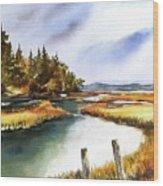 Heyer Pt   Vashon Wa Wood Print