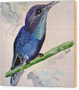 hHUMMINGBIRD 2   Wood Print
