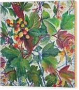 Hi-bush Cranberries Wood Print