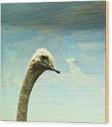 Hi, I Am The Ostrich Wood Print