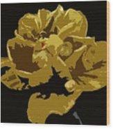 Hibiscus 14 Wood Print