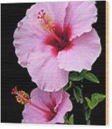 Hibiscus 7 V1 Wood Print