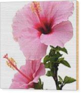Hibiscus 7 V2 Wood Print
