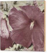 Hibiscus Floral Series  Wood Print