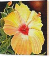 Hibiscus Glory Wood Print