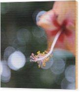 Hibiscus Wood Print
