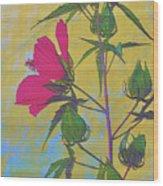 Hibiscus On Brick Wood Print