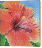 Hibiscus Passion Wood Print