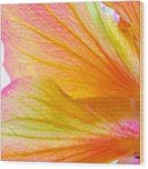 Hibiscus Petals Wood Print