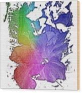 Hibiscus S D Z 2 Cool Rainbow 3 Dimensional Wood Print
