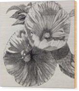 Hibiscus Sketch Wood Print