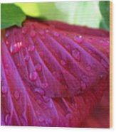 Hibiscus Square Wood Print