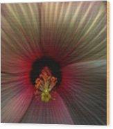 Hibiscus Supreme Wood Print