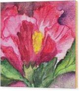Hibiscus Unfolding Wood Print