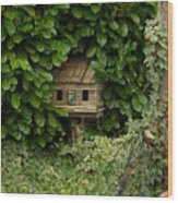 Hidden Birdhouse Wood Print
