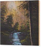Hidden Brook Wood Print by C Steele