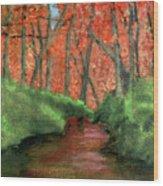 Hidden By Trees Wood Print