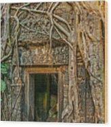 Hidden Door Wood Print