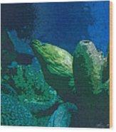 Hidden Eel Wood Print