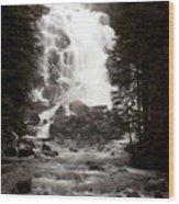 Hidden Falls Wood Print