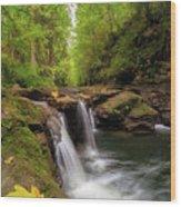 Hidden Falls At Rock Creek Wood Print
