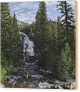 Hidden Falls - Grand Tetons Np Wood Print